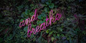 "Plants with ""and breathe"" reminder"